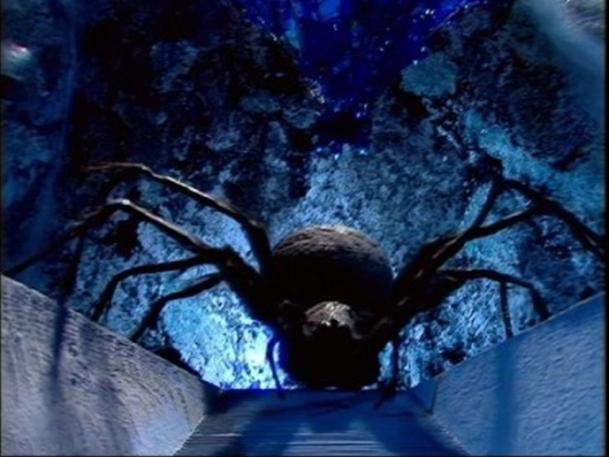 DW Planet of the Spiders 2
