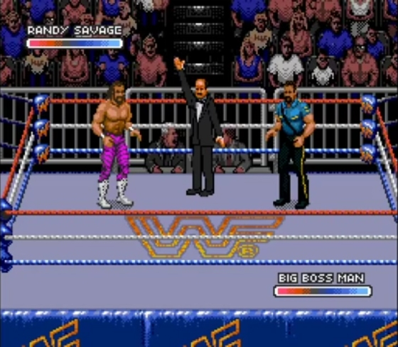 WWF Rage in the Cage 1