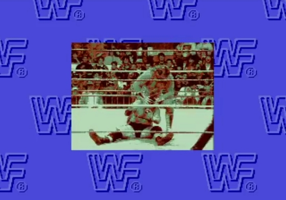 WWF Rage in the Cage 2