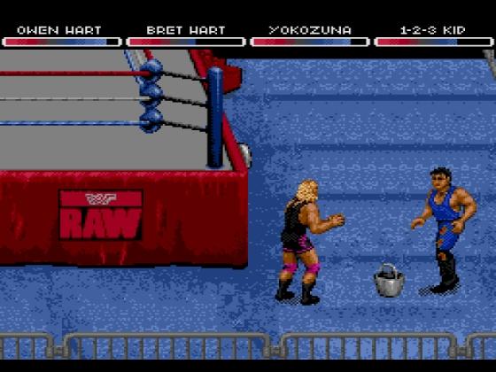 WWF RAW 5
