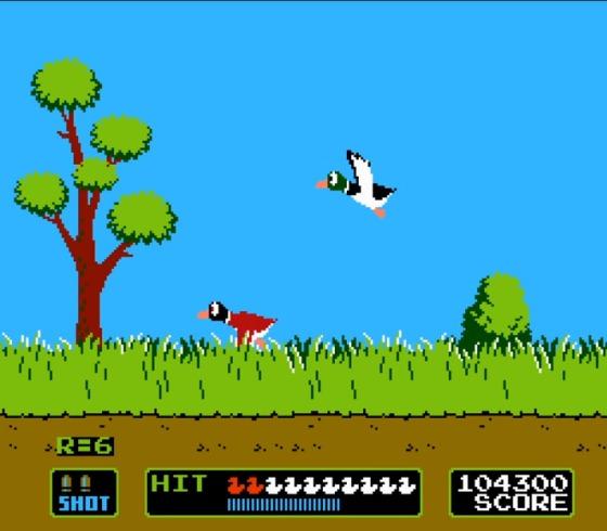 Duck Hunt 5