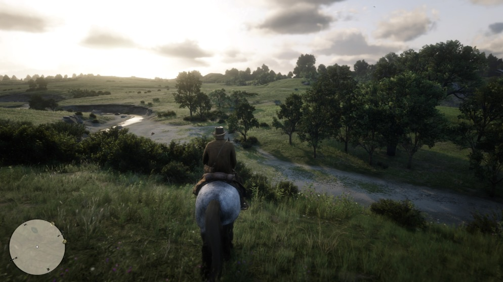 Red Dead Redemption 2_20181107191713